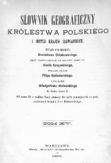 Słownik geograficzny Królestwa Polskiego i innych krajów słowiańskich. T. 15. [Dopełnienia]